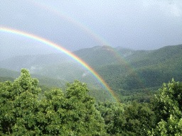 rainbow-pic-2-small-299